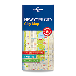 Lonely Planet New York...