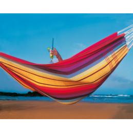 Amazonas Brazilian Barbados...